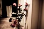 dance_small-78
